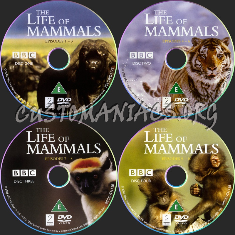 The Life of Mammals dvd label