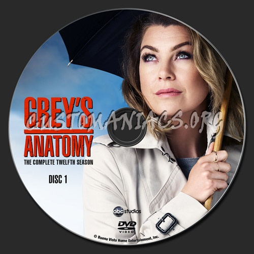 Grey's Anatomy - Season 12 dvd label - DVD Covers & Labels ...