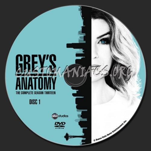 Grey's Anatomy - Season 13 dvd label - DVD Covers & Labels ...