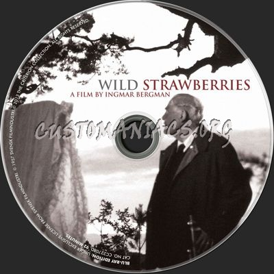 Wild Strawberries blu-ray label