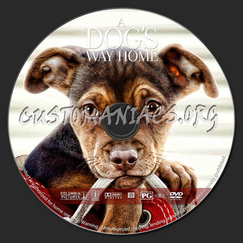 A Dog's Way Home dvd label