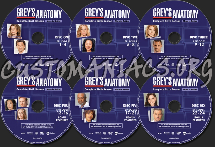 Exelent Greys Anatomy S06 Ornament Anatomy And Physiology Biology